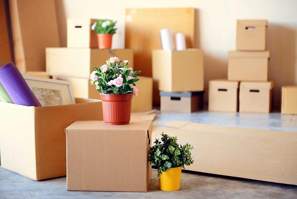 Die Kosten Umzug 2 Zimmer Wohnung - wie hoch sind die circa?